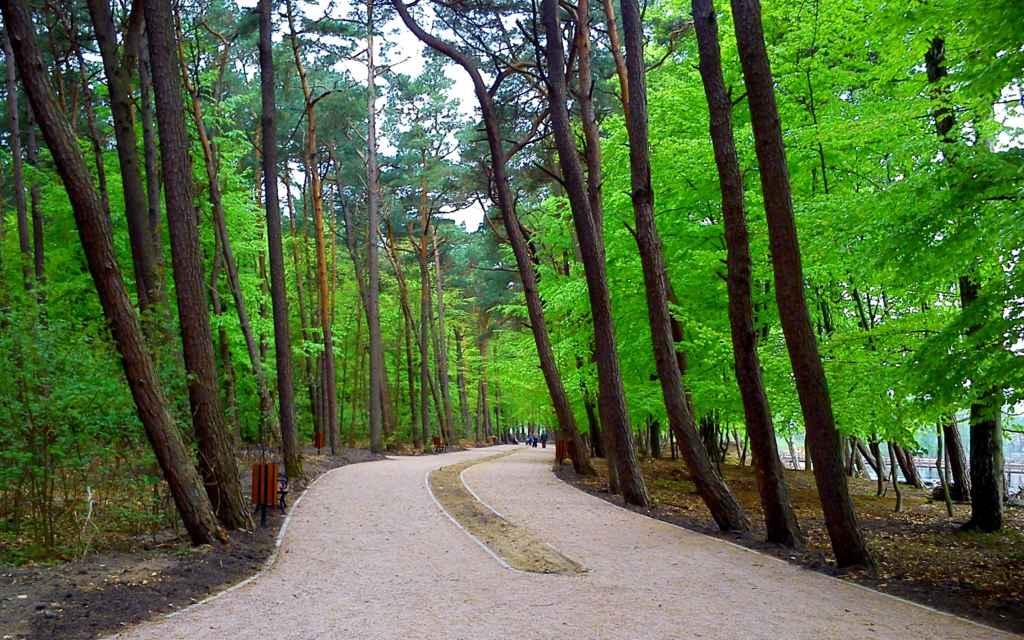 Park Nadmorski - Łabędzi Staw - fot. Paweł Dąbrowski