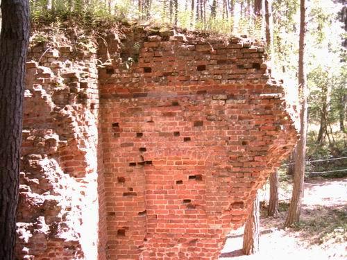 Ruiny Kościoła św. Mikołaja - fot. Radosław Czyżewski