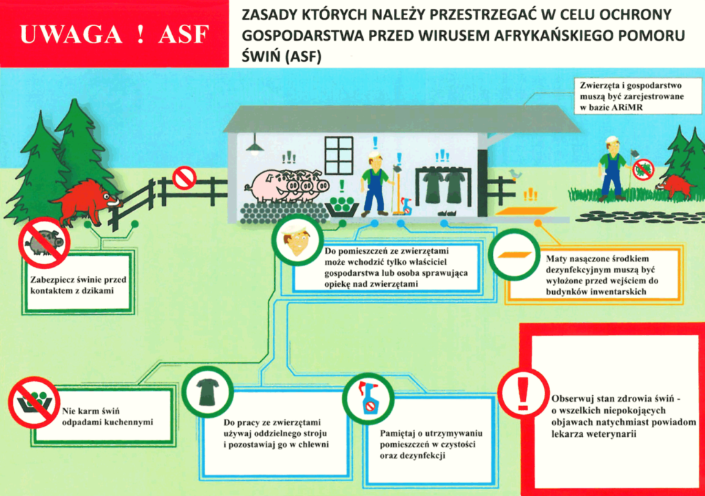 Schemat - zasady ochrony gospodarstwa przed ASF